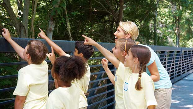 3 Ideas for Free and Low-Cost Field Trips