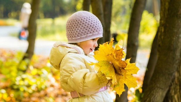 Fall Fun - Using Your Sense of Smell - Ideas for Preschoolers